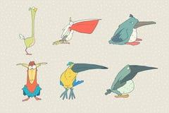 Reeks van leuke die beeldverhaalvogel op witte achtergrond wordt geïsoleerd Vector dierlijke illustratie Stock Foto