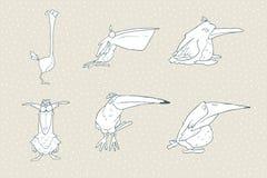 Reeks van leuke die beeldverhaalvogel op witte achtergrond wordt geïsoleerd Vector dierlijke illustratie Stock Fotografie