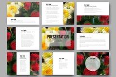 Reeks van 9 malplaatjes voor presentatiedia's rozen vector illustratie