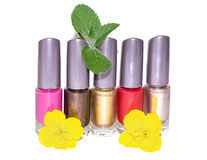 Reeks van multi-colored nagellak Royalty-vrije Stock Afbeelding