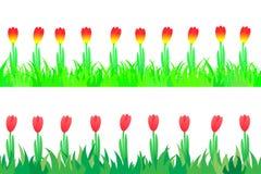 Reeks van naadloos de tulpen in het gras. vector illustratie
