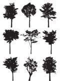 Reeks van negen bomen vectorsilhouet Royalty-vrije Stock Fotografie