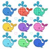 Reeks van negen gelukkige kleurenwalvissen Royalty-vrije Stock Afbeeldingen