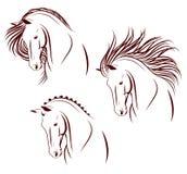 Reeks van 3 paardhoofden Stock Afbeelding