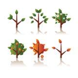 Reeks van pictogrammenboom, seizoenen Stock Foto