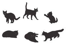 Reeks van realistisch zwart kattensilhouet Royalty-vrije Stock Afbeeldingen