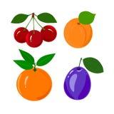 Reeks van sappig rijp die fruit op een wit wordt geïsoleerd Royalty-vrije Stock Afbeeldingen