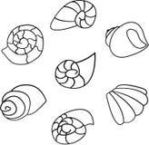 Reeks van shell vector op witte achtergrond Royalty-vrije Stock Foto