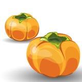 Reeks van Twee Glanzende Oranje Permisson vector illustratie