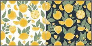 Reeks van twee naadloze patronen met hand getrokken sinaasappelen en plakken in schetsstijl op witte en donkere achtergrond Vecto stock illustratie