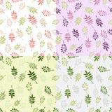 Reeks van 4 uitstekende vector naadloze patronen met decoratieve bladeren Stock Afbeelding