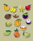 Reeks van vectorfruit Stock Foto