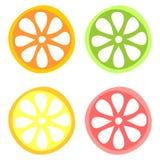 Reeks van vectorillustratie van citrusvruchten Kalk, sinaasappel, citroen en grapefruit, op de witte achtergrond wordt geïsoleerd vector illustratie