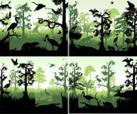 Reeks van vectorregenwoudmoerasland in het malplaatje van het zonsondergangontwerp met dieren royalty-vrije illustratie