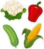 Reeks van vegetables2 stock illustratie
