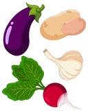 Reeks van vegetables3 stock illustratie