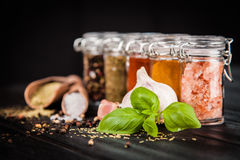 Reeks van verschillend kruiden en kruid stock foto