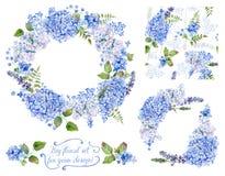 Reeks van verschillende blauwe, cyaanhydrangea hortensia, lavendel, bes, fram Royalty-vrije Stock Foto