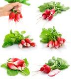 Reeks van verse rode radijs met groen blad stock afbeeldingen