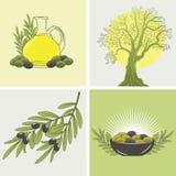 Reeks van vier banners op het thema van olijven en olie Royalty-vrije Stock Foto's
