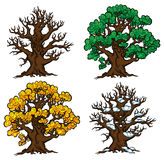 Reeks van vier bomen in diverse stadia van de groei Stock Afbeelding