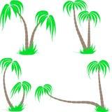 Reeks van vier die palmen in de verschillende vorm trekken Royalty-vrije Stock Foto's