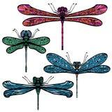 Reeks van vier libellen royalty-vrije illustratie