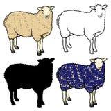 Reeks van vier schapen: wit, blauw, schapensilhouet en overzichtsschapen Stock Foto