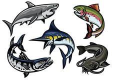 Reeks van vissenillustratie in gekleurd royalty-vrije illustratie