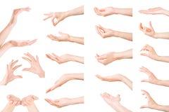 Reeks van vrouwenhanden het tonen, holding en het steunen van iets Is Stock Afbeeldingen