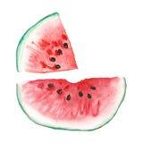 Reeks van watermeloen Royalty-vrije Stock Afbeeldingen