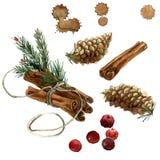 Reeks van waterverf de hand geschilderde Kerstmis van kaneel, spartakken, sparappel Stock Foto's