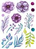 Reeks van Waterverf Lichte Violet Flowers And Leaves Stock Foto's