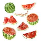 Reeks van waterverfplak van watermeloen Royalty-vrije Stock Afbeeldingen