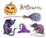 Reeks van witchshoed, pompoen, kat, rat Halloween Stock Fotografie