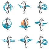Reeks van zeepaardje Stock Afbeelding