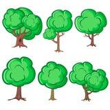 Reeks van zes oude bomen Stock Foto