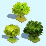 Reeks vector 3D isometrische bomen met schaduw en een groen gazon stock illustratie