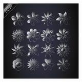 Reeks Vectorbloemen. Stock Afbeelding