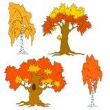 Reeks vectorbomen Malplaatje voor ontwerp Geïsoleerde vector Seizoenen, de Herfst Een boom met rood en sinaasappel gaat weg Royalty-vrije Stock Afbeeldingen