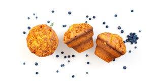 Reeks vers gebakken muffins Royalty-vrije Stock Foto