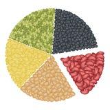 Reeks Verschillende Bonen in Cirkeldiagramconcept Royalty-vrije Stock Afbeeldingen