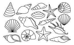 Reeks Verschillende die Shells op Witte Achtergrond wordt geïsoleerd royalty-vrije illustratie