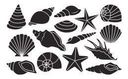 Reeks Verschillende die Shells op Witte Achtergrond wordt geïsoleerd vector illustratie