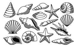 Reeks Verschillende die Shells op Witte Achtergrond wordt geïsoleerd stock illustratie