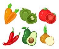 Reeks verschillende groenten Wortel, groene paprika, tomaat, Spaanse peper, Royalty-vrije Stock Fotografie