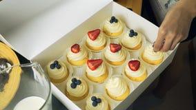 Reeks verschillende heerlijke cupcakes in een document vakje stock video