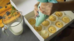 Reeks verschillende heerlijke cupcakes in een document vakje stock footage