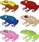 Reeks verschillende kikkers vector illustratie
