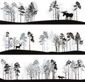 Reeks verschillende landschappen met bomen en dieren Stock Afbeeldingen
